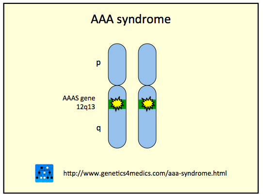 Allgrove Syndrome or Triple-A or AAA Syndrome